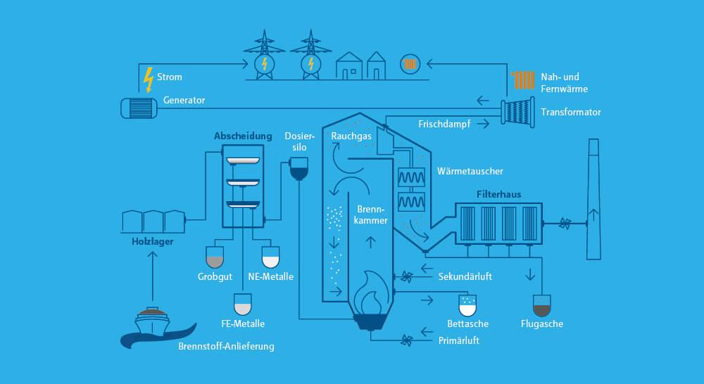 Infografik zur Funktionsweise eines Biomassekraftwerks