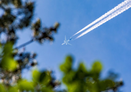 Flugzeug mit Kondensstreifen am blauen Himmel und Blättern