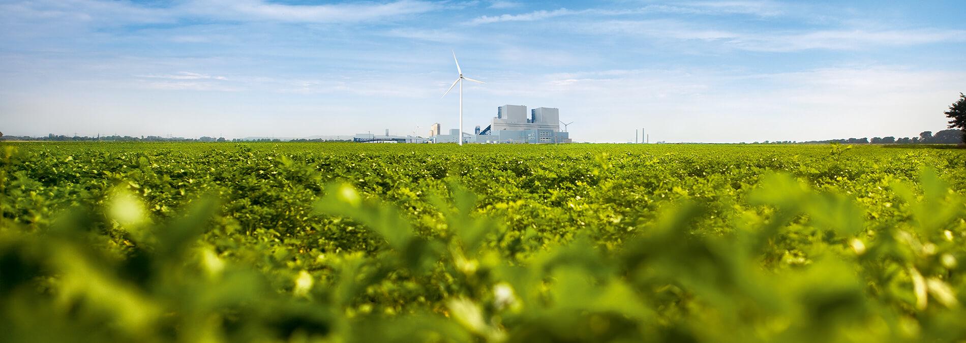 Kraftwerk in der Ferne vor grüner Landschaft