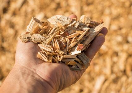 Stimmungsbild Biomasse Holzschnitzel in Hand